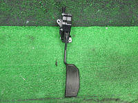 Pedal Assy, Accelerator, TOYOTA, 78110 12040